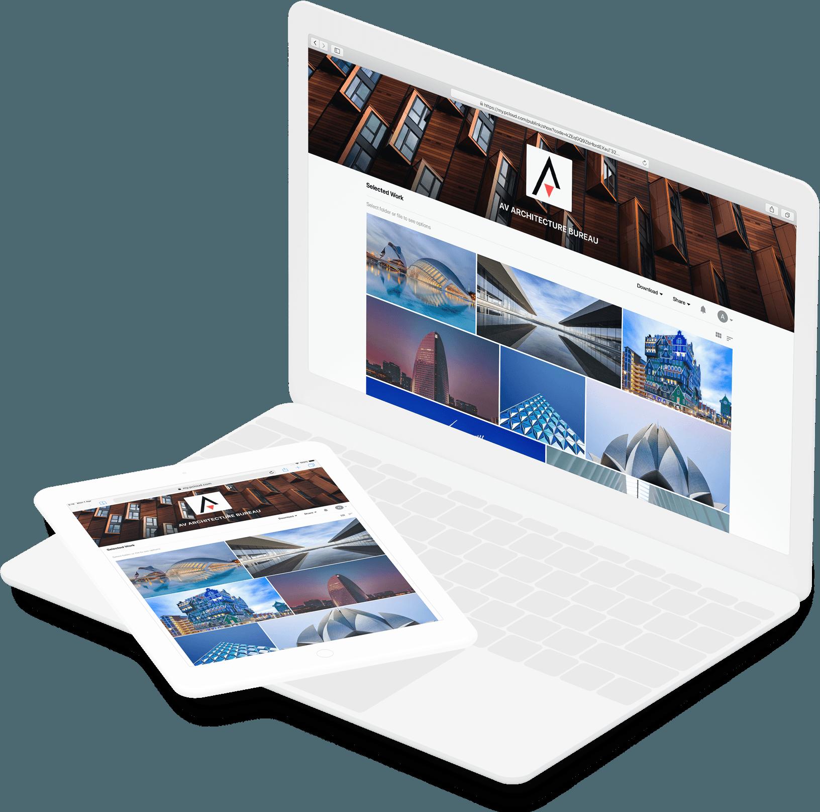 pCloud - Digital Asset Management Software